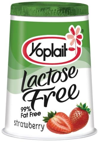 Food And Product Reviews Yoplait Lactose Free Yogurt