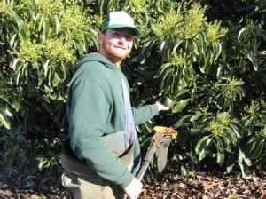 Farmer Ben of California Avocados Direct